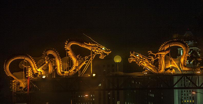 Chinatown dragons_7891
