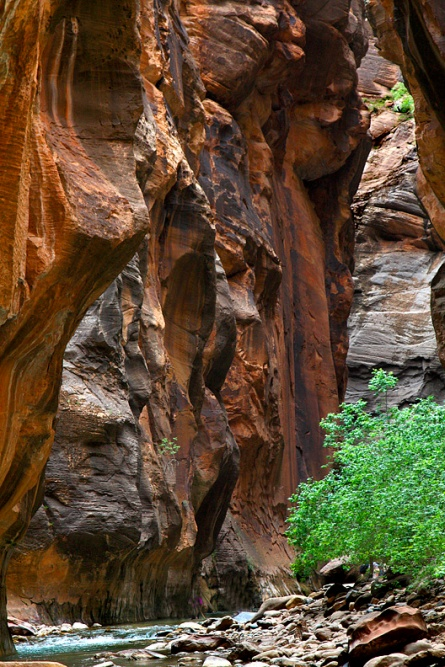 The Narrows at Zion is in a deep canyon but...