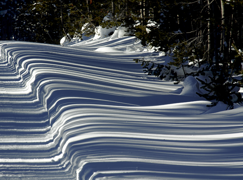 A late afternoon sun will produce shadows from nearby pine trees that resemble a barcode.