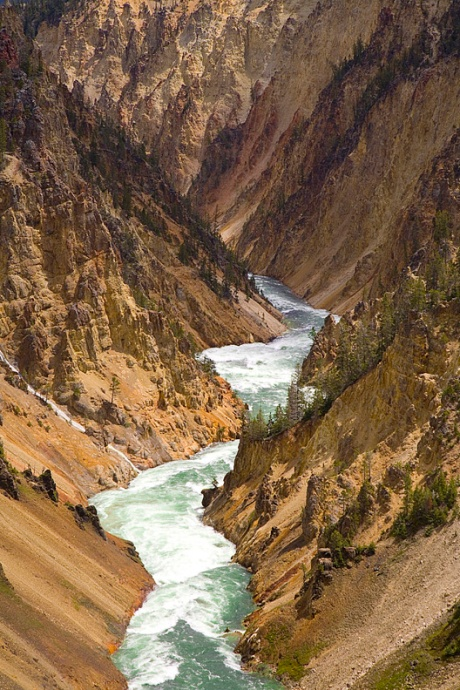 The Yellowstone River carved The Grand Canyon Of The Yellowstone.
