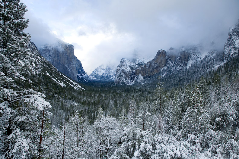 A foot of fresh snow on Yosemite Valley.