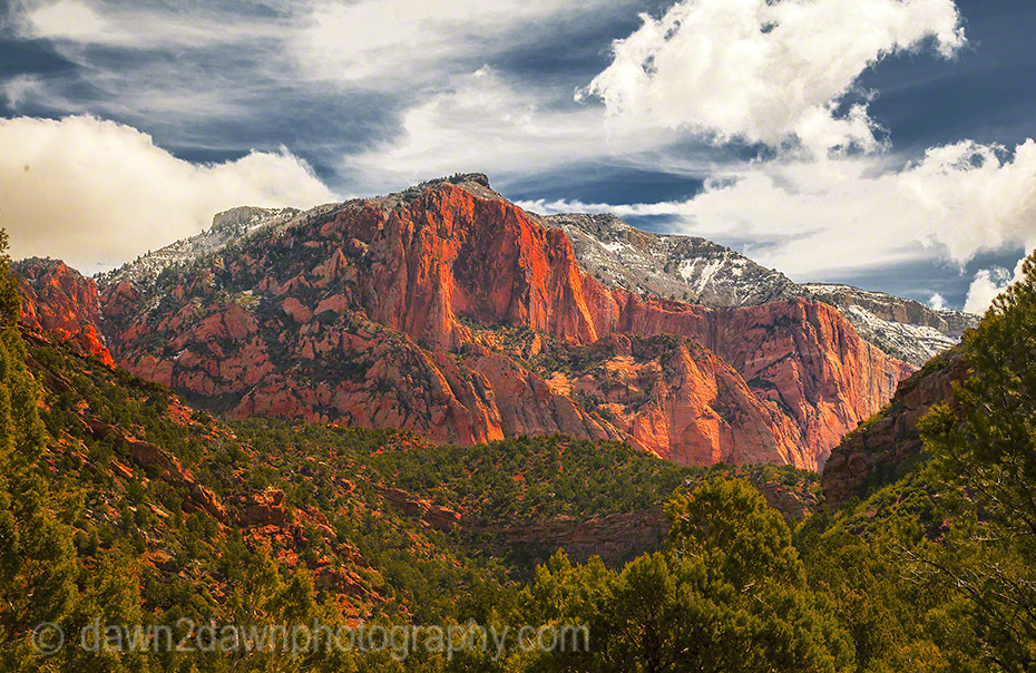 Kolob Canyon_2598