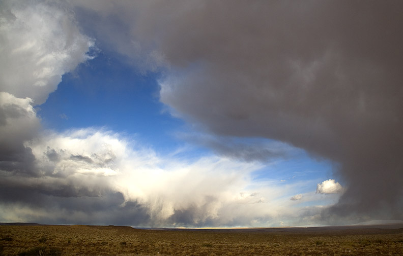 STORM CLOUDS OVER AN ARIZONA DESERT