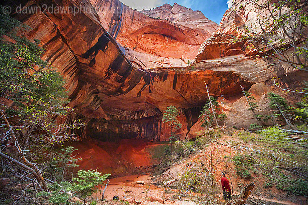 Zion's Taylor Creek_2776