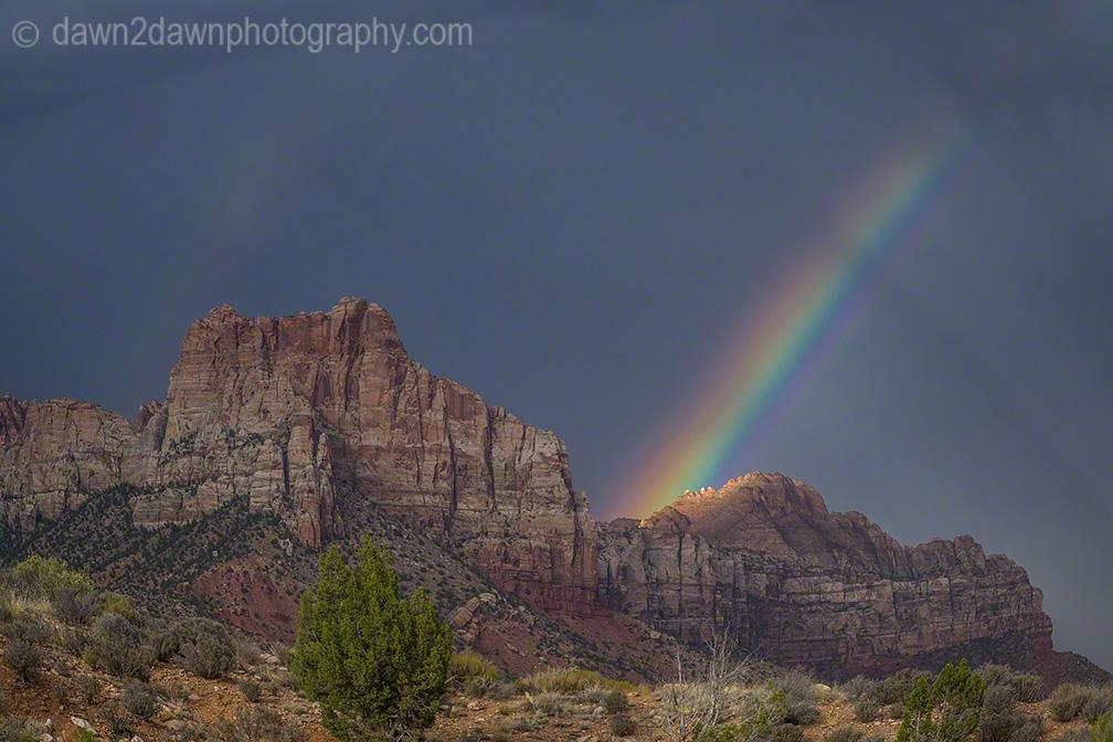 Zion Canyon Rainbow