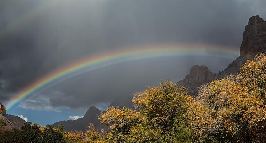 Zion Rainbow