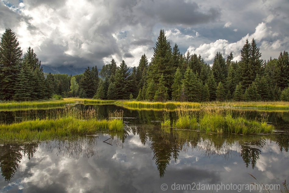 Teton Pond_9247