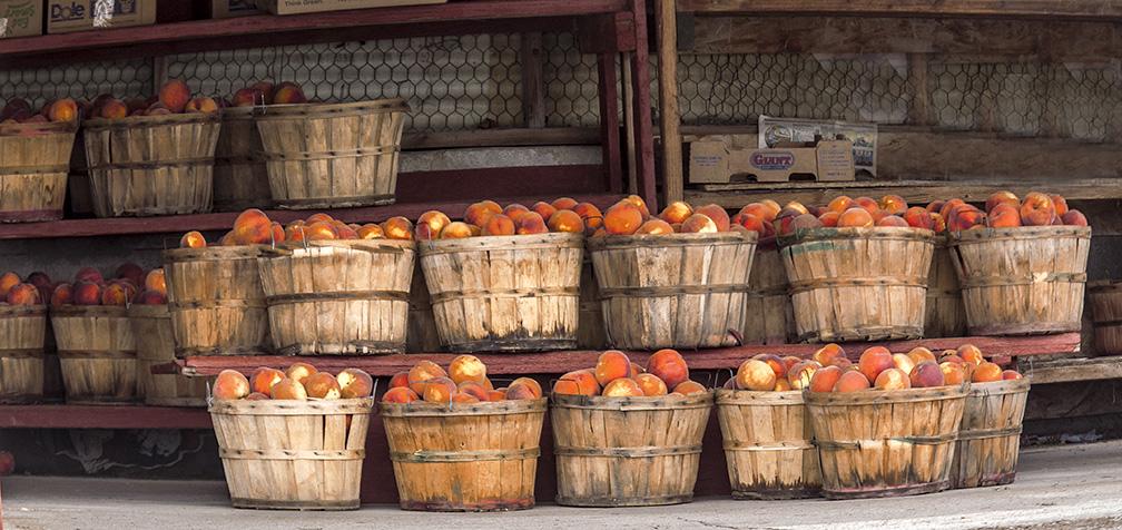 Utah Peaches