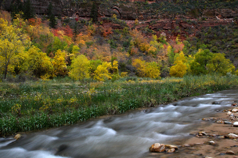 Virgin River Fall Color