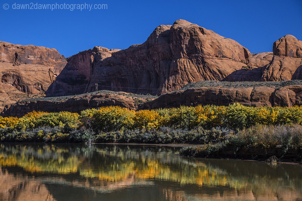 Colorado River Reflection_4930