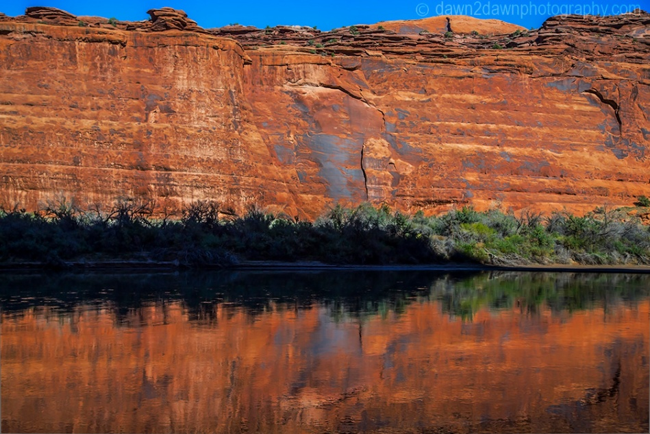 Colorado River Reflection_4965