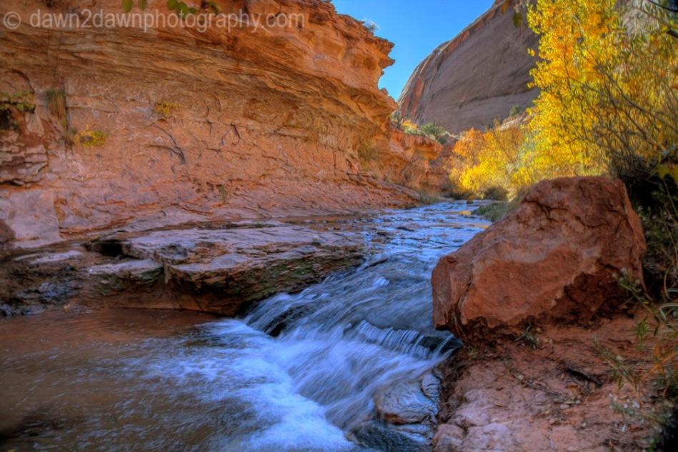 Negro Bill Canyon Stream