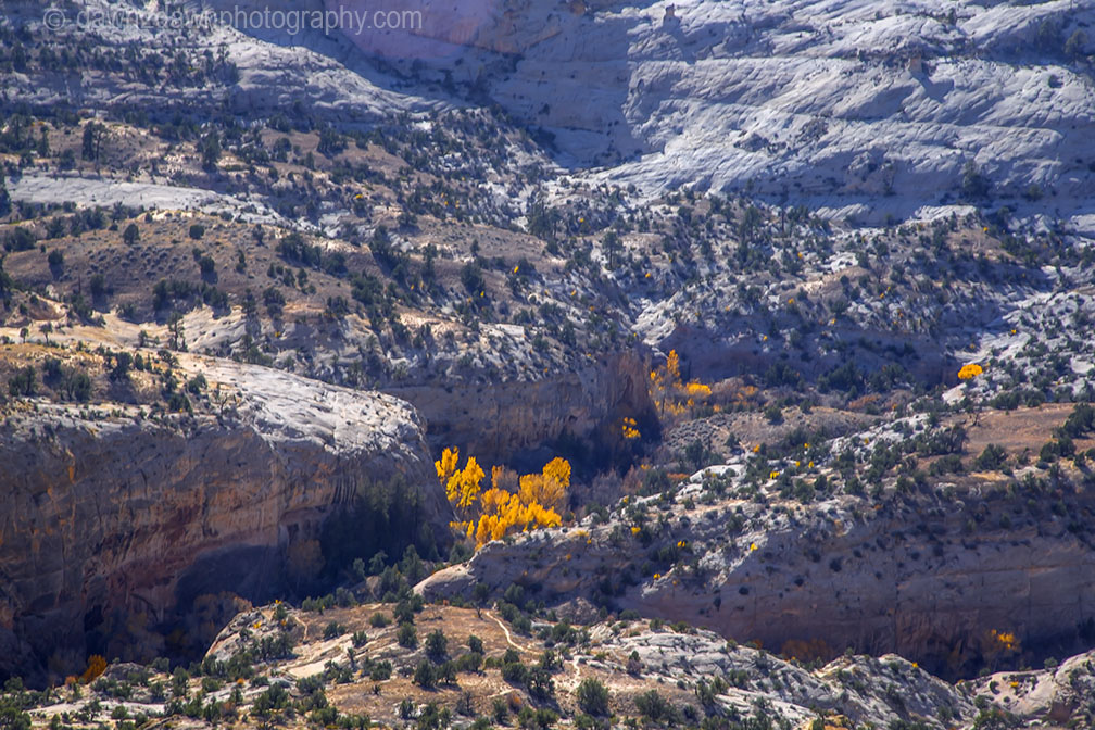 Calf Creek Autumn