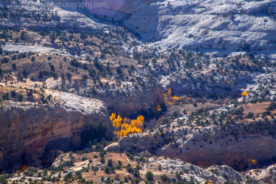 Calf Creek Autumn