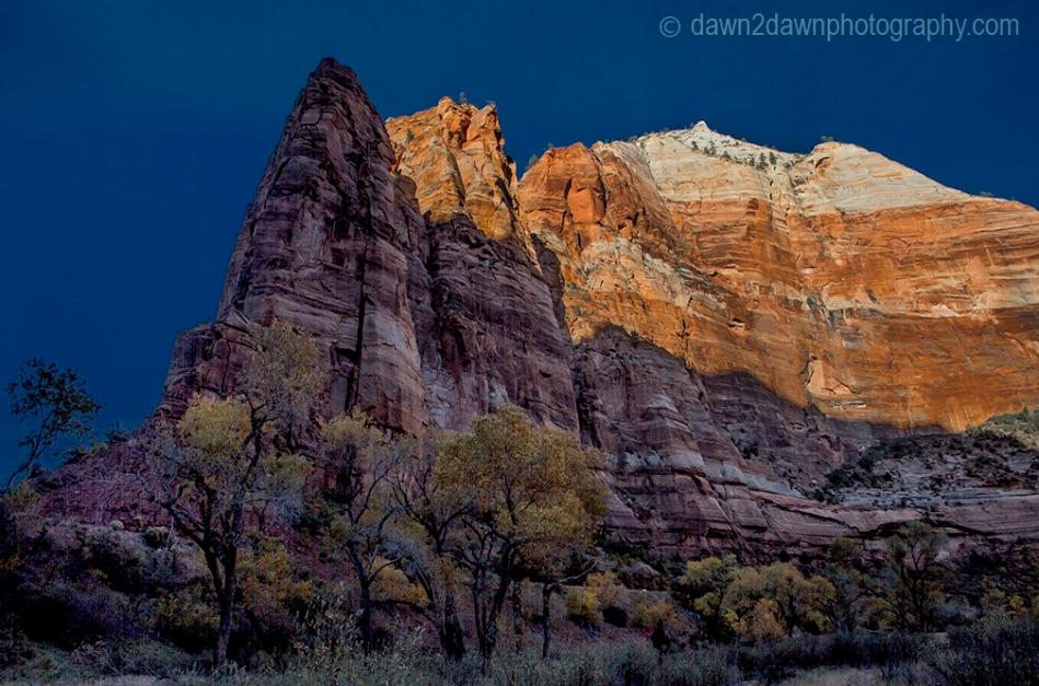 Zion's Big Bend Autumn