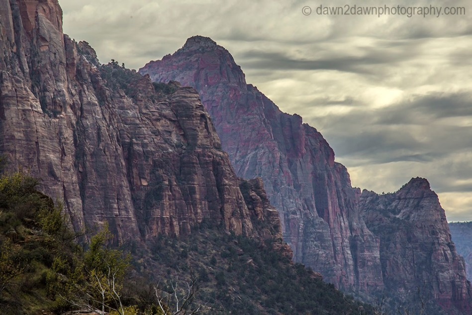 Zion Canyon Autumn