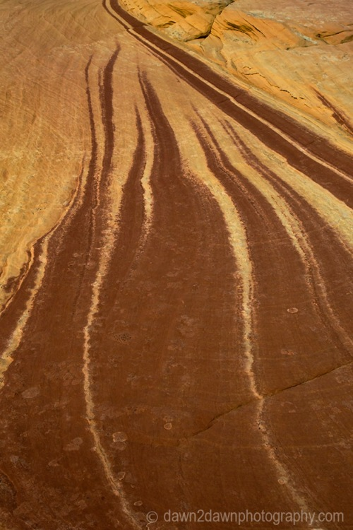 Coyote Buttes Abstract_9648