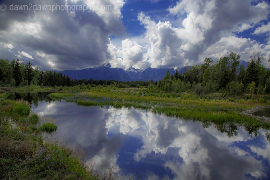 Teton Pond Reflection