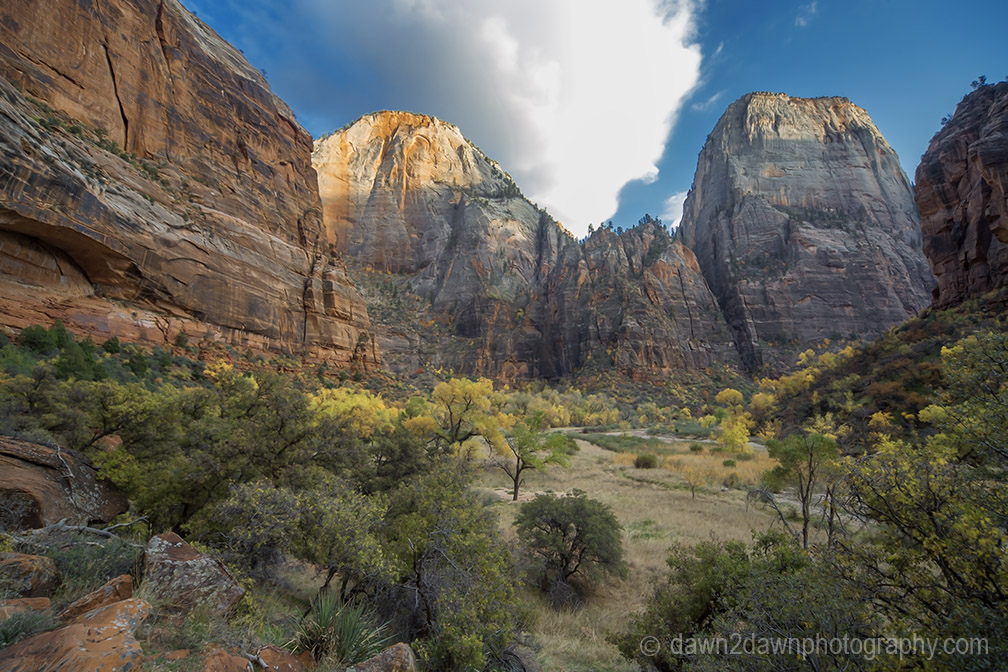 Zion Big Bend Autumn