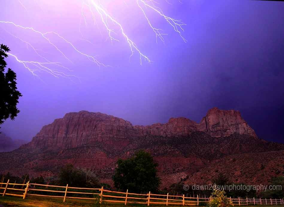 Zion Lightning B_4647