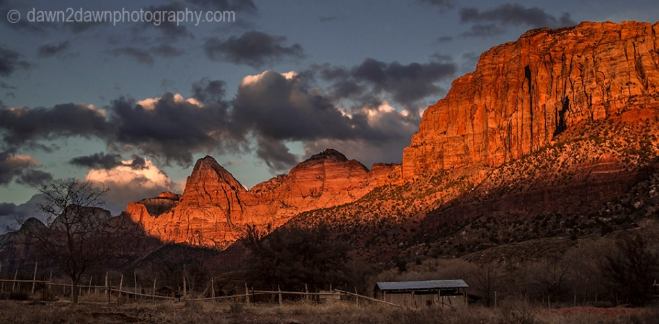 Zion Sunset