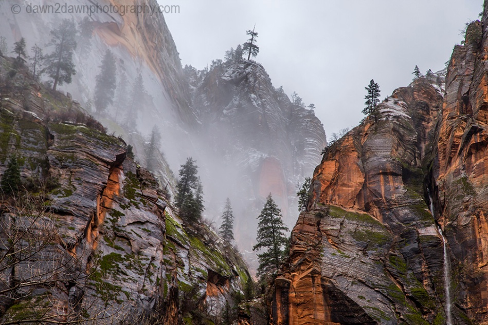Zion Canyon Waterfall_1725