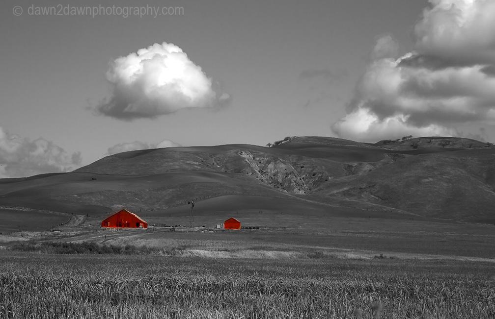 California Farmland
