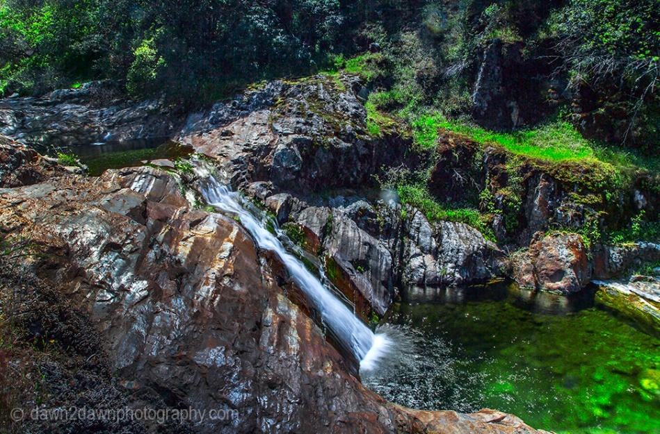 Sequoia's Paradise Creek