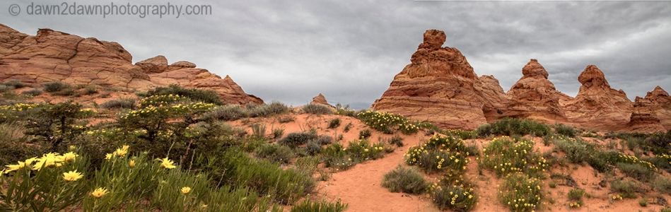 S Coyote Buttes Pano_6722
