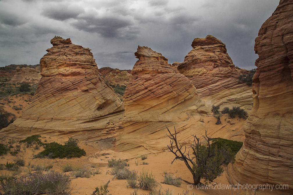 Unusual sandstone rock formations at South Coyote Buttes at Vermillion Cliffs National Monument, Arizona