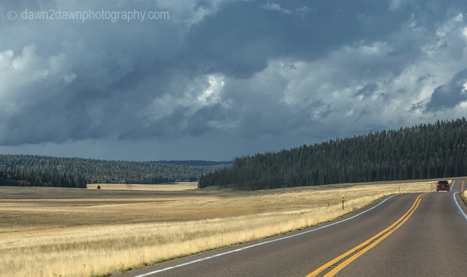 Highway 67 winds its way through open meadows and The Kaibab National Forest on its way to the North Rim of Grand Canyon National Park, Arizona