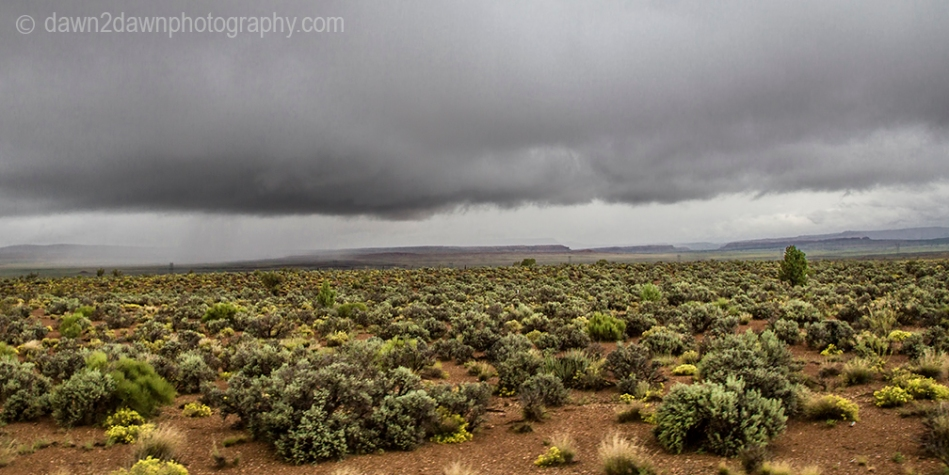 Storm clouds appear in the sagebrush country of Northern Arizona