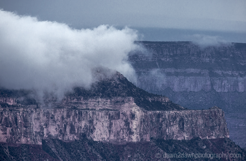 Foggy Grand Canyon from Point Sublime at Grand Canyon National Park, Arizona