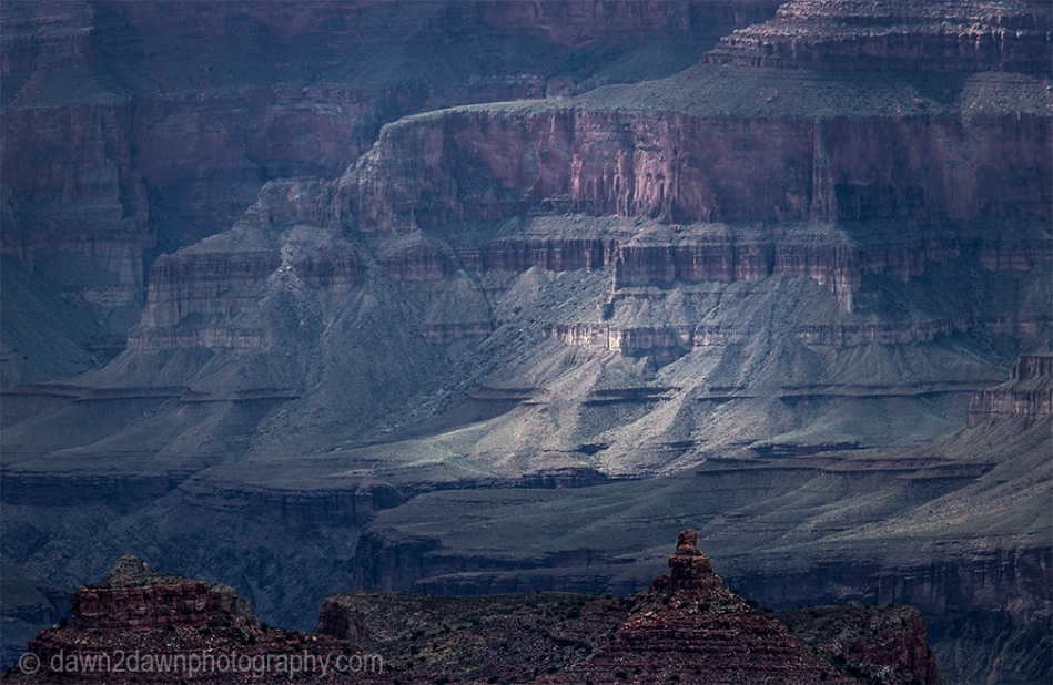 The walls of the Grand Canyon get green after recent rains