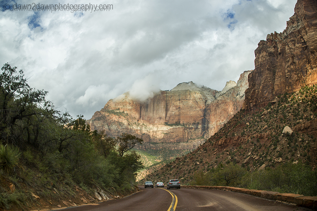Zion Road_0929