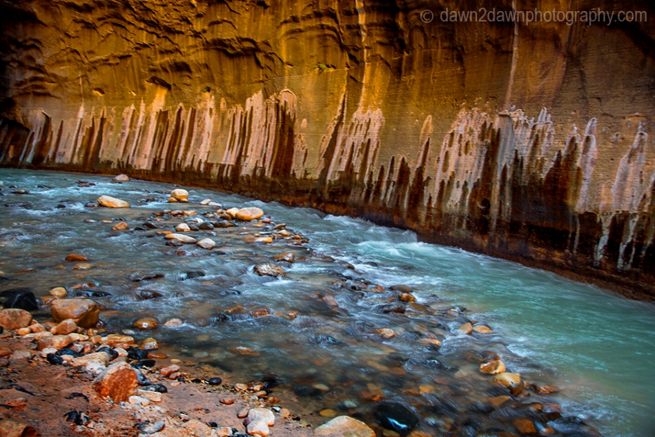 The Virgin River cuts through The Narrows at Zion National Park, Utah
