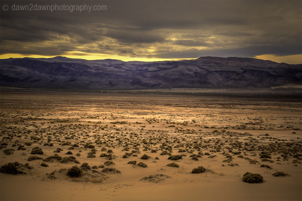 The sagebrush and desert landscape at Eureka Dunes at Death Valley National Park, California