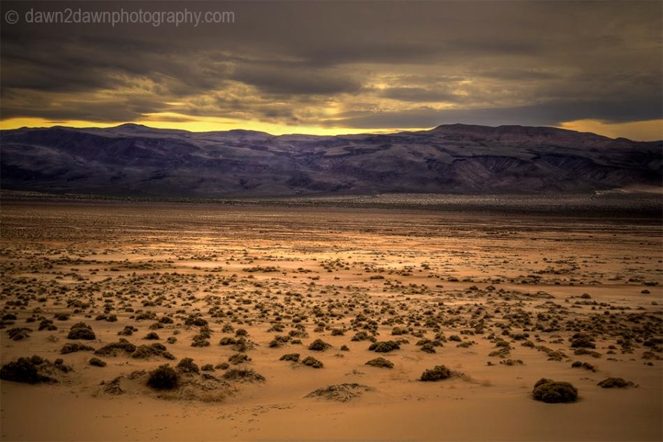 The sagebrush and desert landscape at Eureka Dunes at Death Valley National Park, California