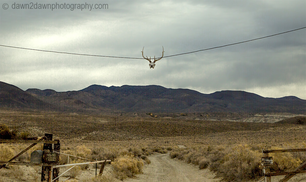 Owens Valley Ranch_2313