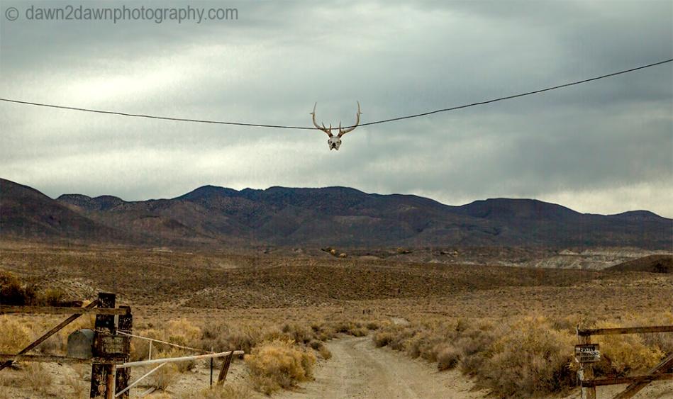 Owens Valley Ranch_2313