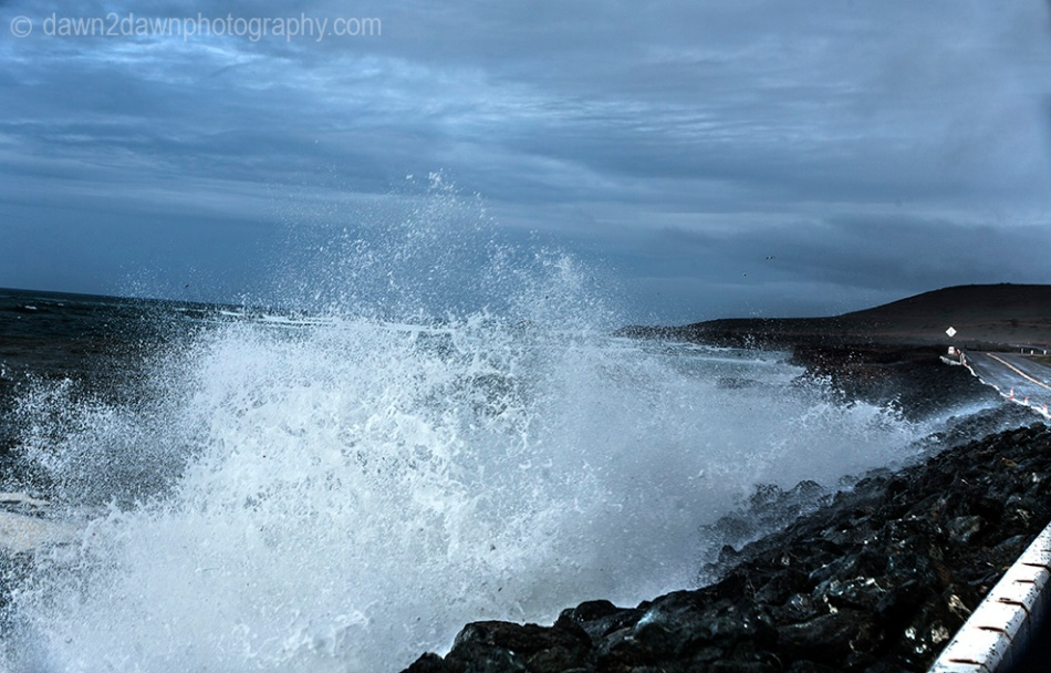 Cal Coast Waves_8270