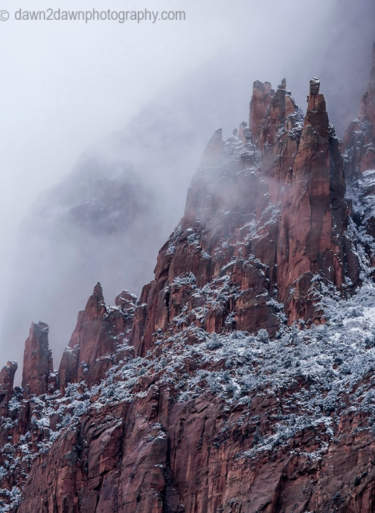 Fresh snow has fallen during autumn at Zion National Park