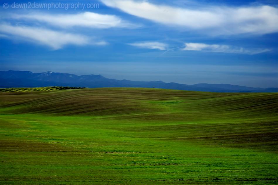 Farmland in rural California.
