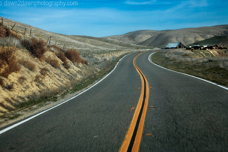 A two lane road passes through pastureland in rural California