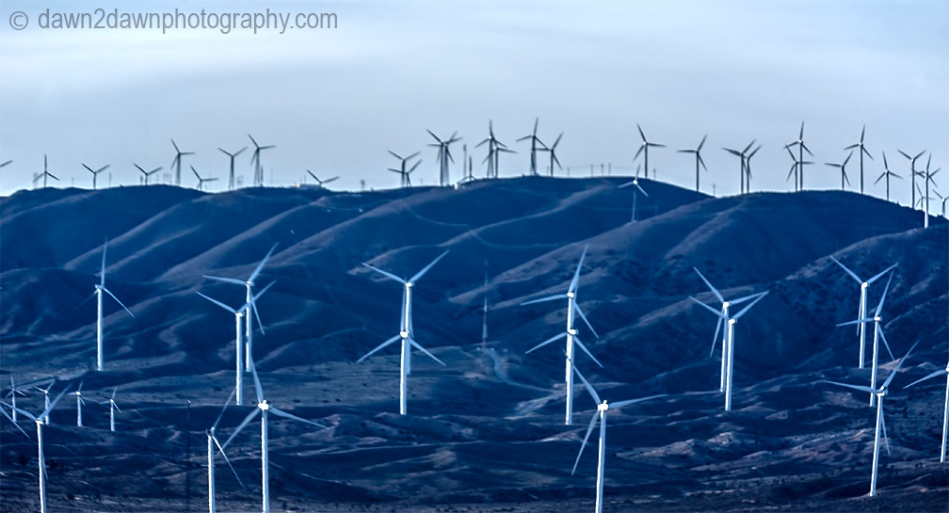 How about a wind farm!