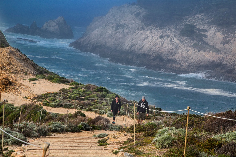 Cal Coast pt Lobos Sign_7973