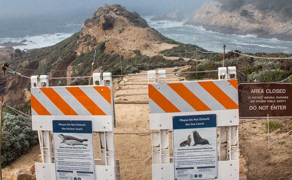 Cal Coast Pt Lobos Sign_7980