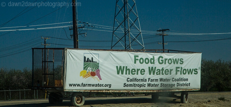 Cal Water Signs_8456