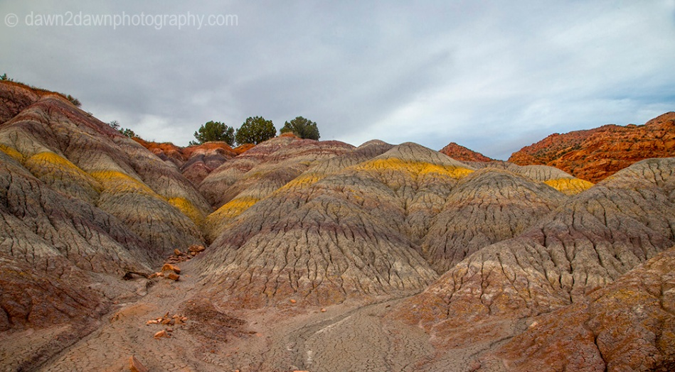 The colorful sedimentary layer of clay is uncovered at Vermilion Cliffs National Monument, Arizona