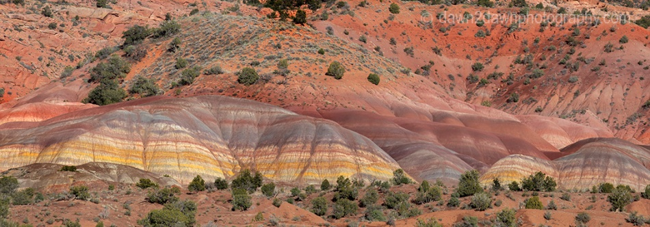 The colorful clay beds are exposed at Coyote Buttes at Vermilion Cliffs National Monument, Arizona
